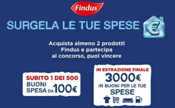 Findus vinci Buoni Spesa da 100 euro Surgela le tue spese